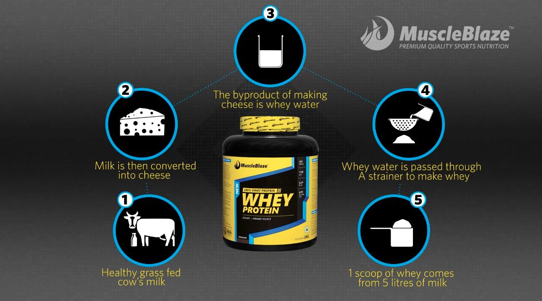 Whey Protein Gym Series Spot